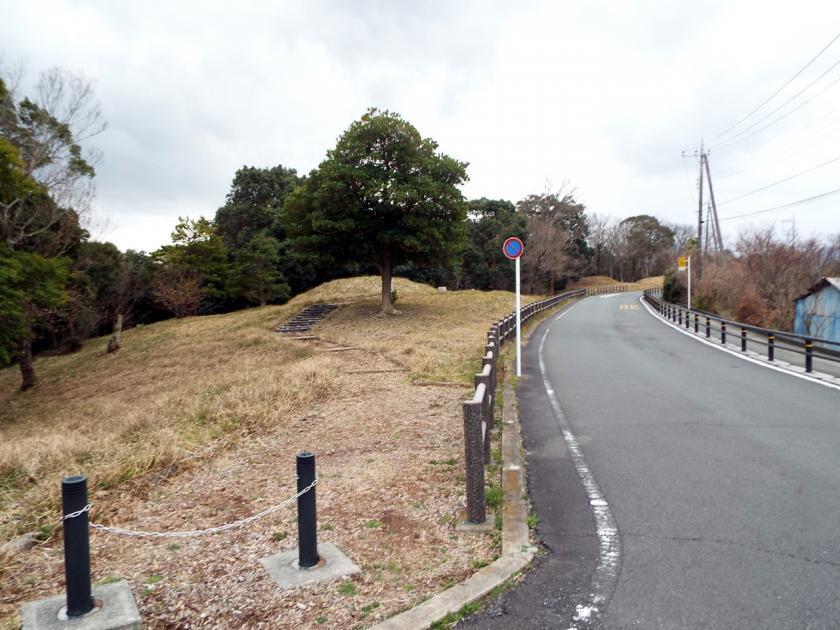 mukaiyamaBarea.jpg