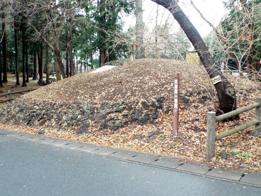 oobuchikatakura1ne.jpg