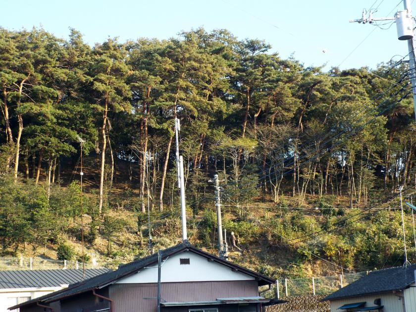 otahachimanyamaw.jpg