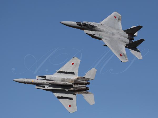 スプレッドアウトするF-15