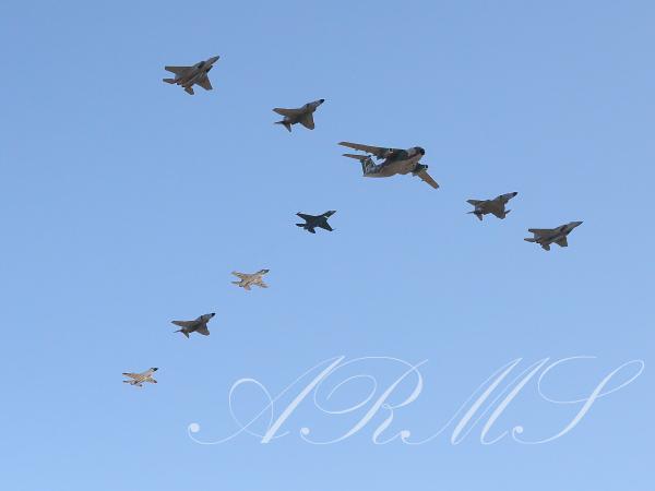 2019年の岐阜基地航空祭