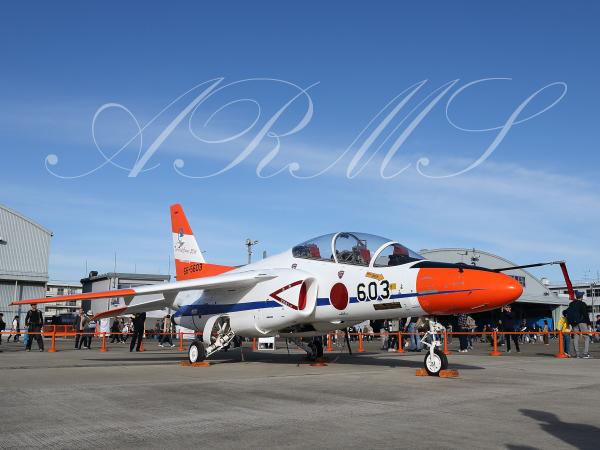 T-4 603 TPC50周年特別塗装