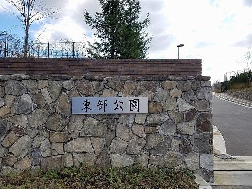 img_toubu.jpg