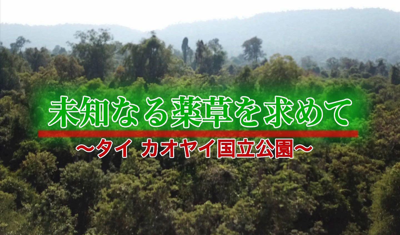 khaoyai_title