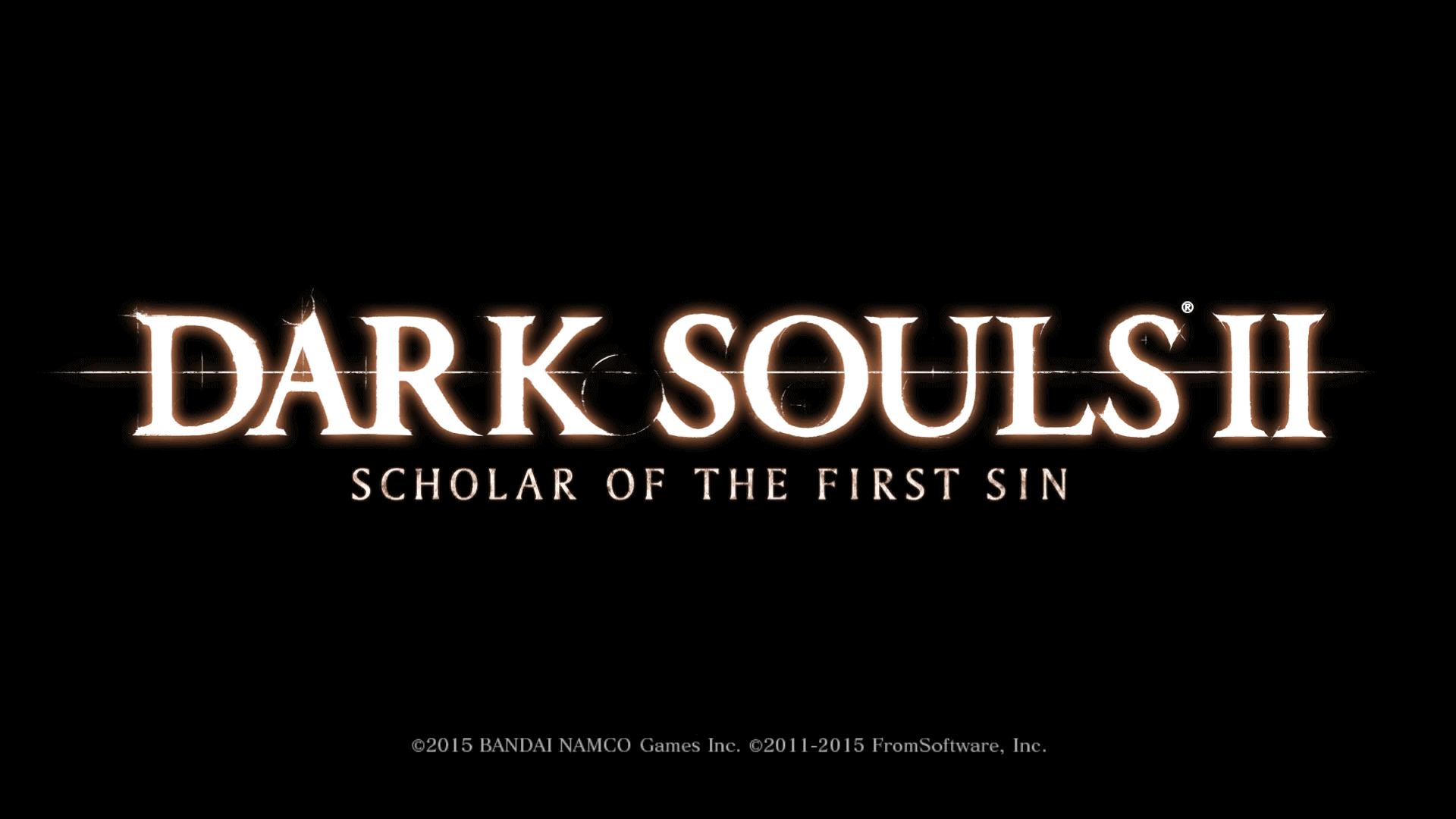 PC ゲーム DARK SOULS II Scholar of the First Sin のキャラ移動をスムーズに操作できるアナログスティック設定方法
