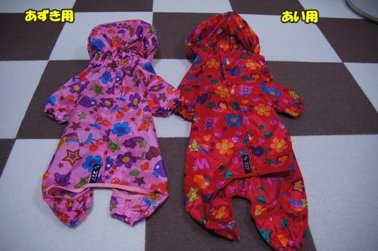 raincoat9.jpg