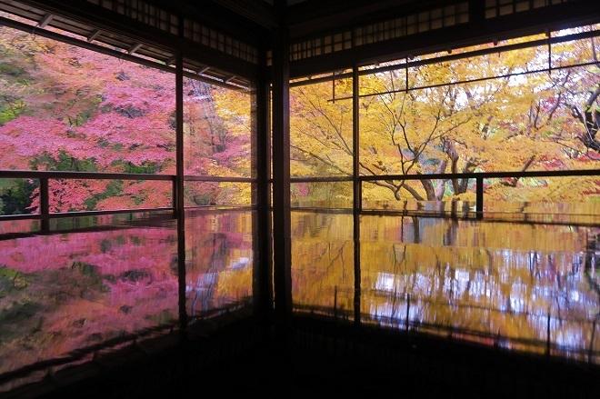 瑠璃光院の紅葉(9)