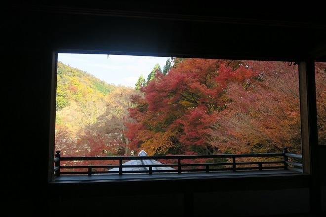 瑠璃光院の紅葉(10)