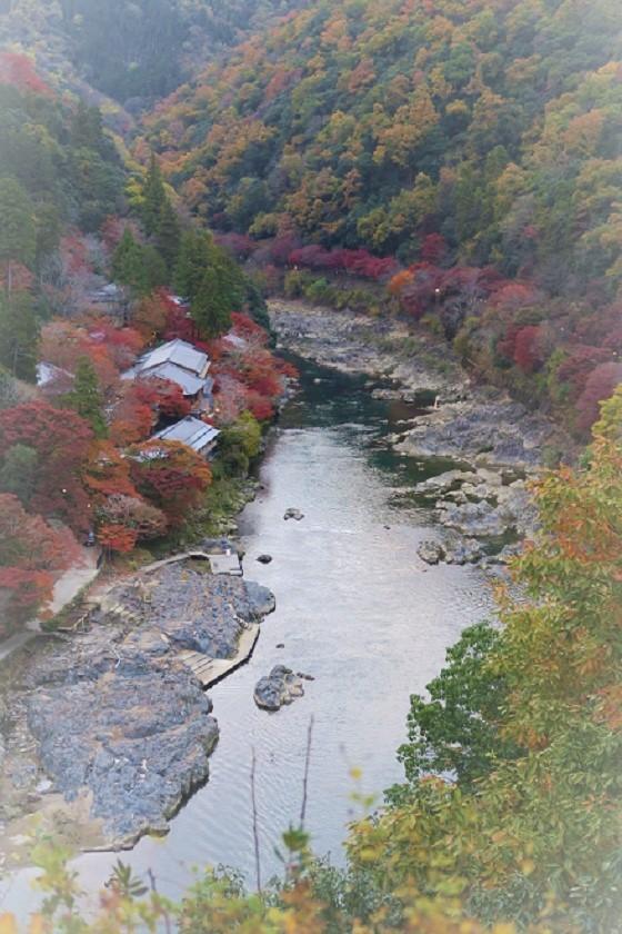 嵐山紅葉(9)