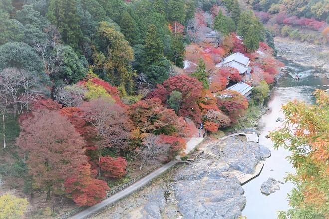 嵐山紅葉(10)