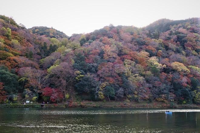嵐山紅葉(3)