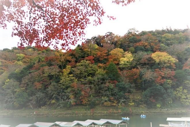 嵐山紅葉(4)
