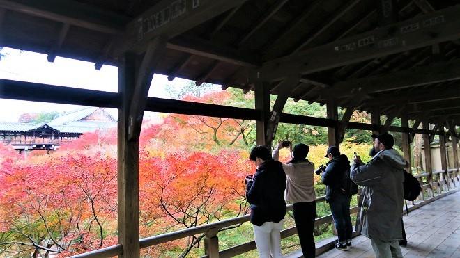 東福寺「臥雲橋」から見た紅葉(3)