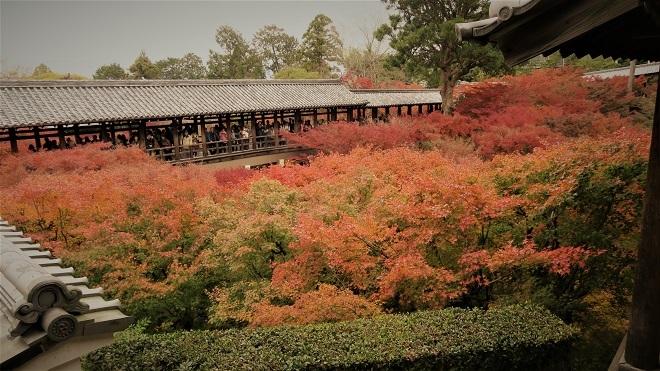 東福寺方丈庭園の紅葉(2)