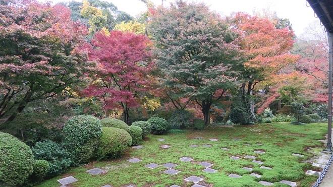 東福寺方丈庭園の紅葉(4)