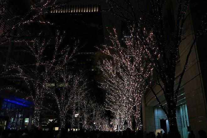 2019東京・丸の内のイルミネーション(5)
