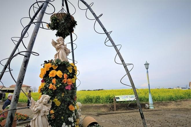 2020ソレイユの丘菜の花(03)