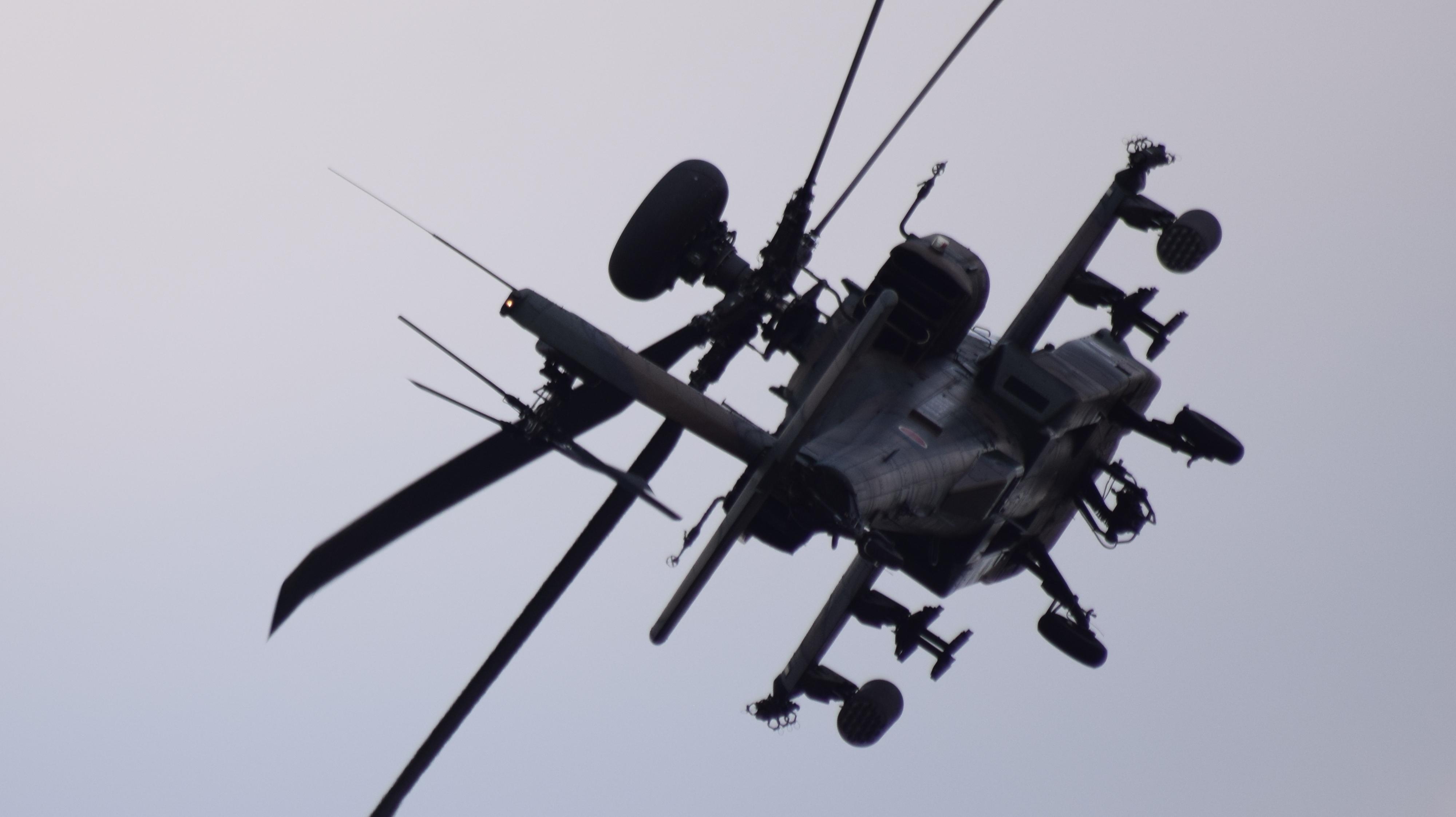 明野航空祭 (244)