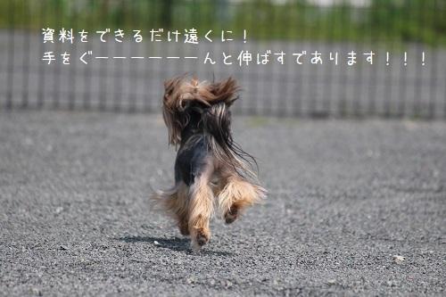IMG_4591.jpg
