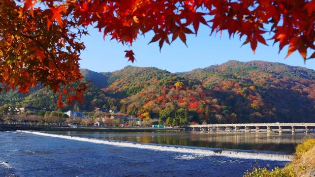 ベネシード 嵐山の紅葉