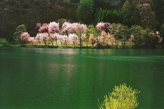 中綱湖04_0001