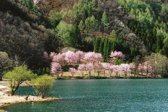 中綱湖04_0005