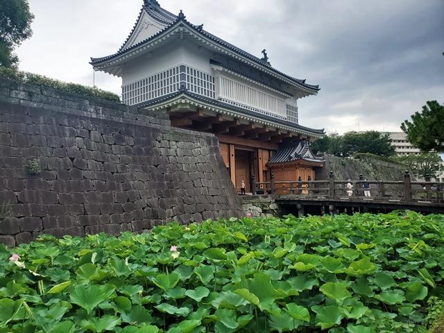 鶴丸城跡1-4