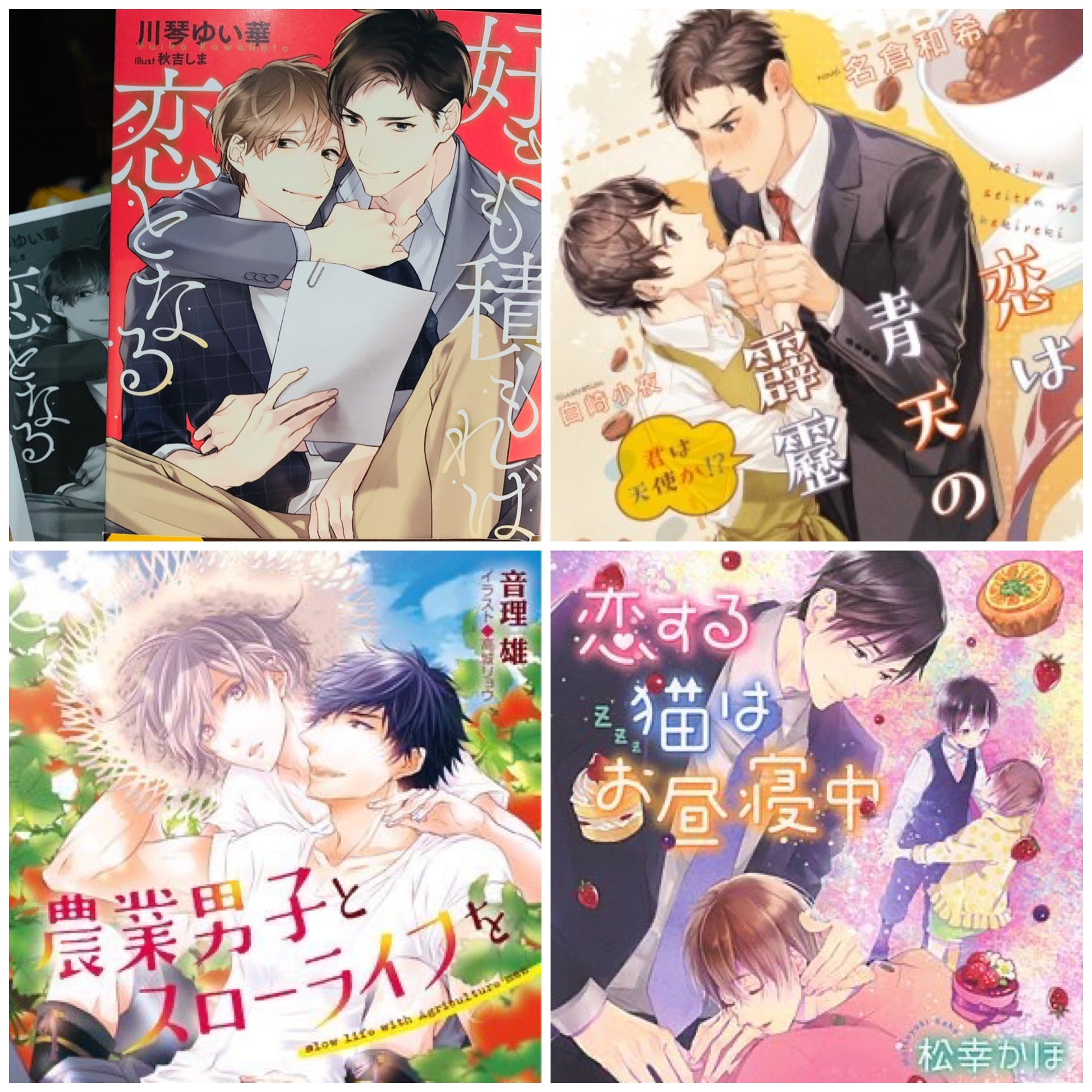 読書記録+補足40【BL小説4冊】