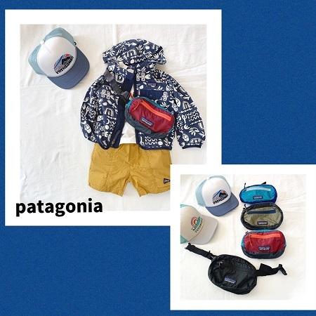 patagonia_20200216175929119.jpg