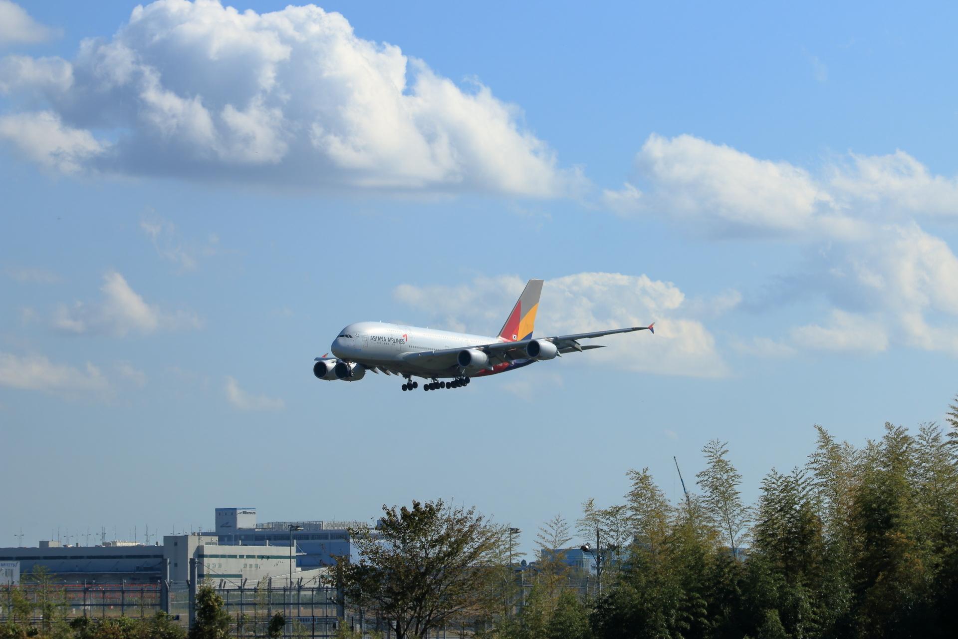 アシアナ航空 A380-841
