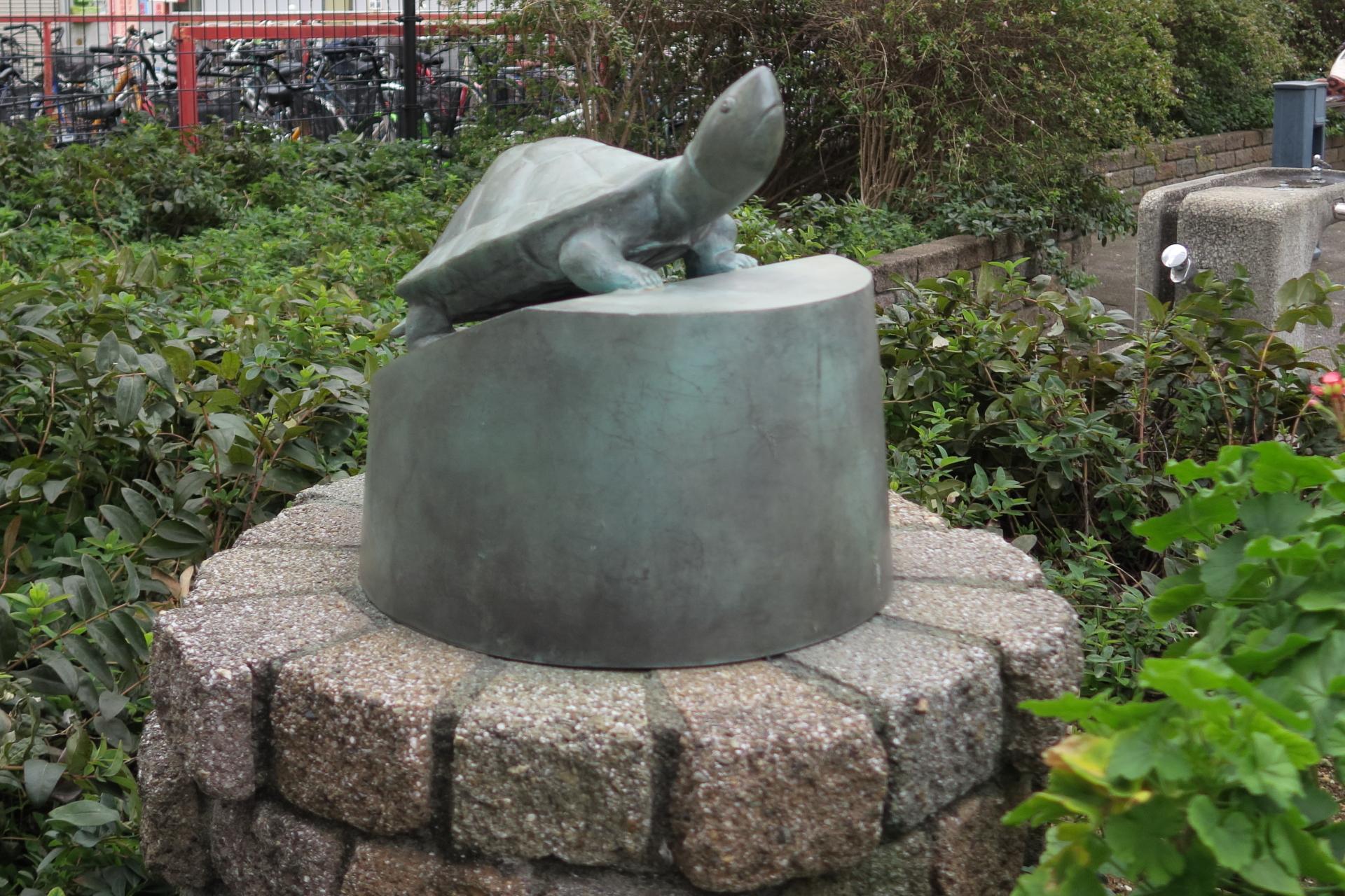 ウサギと亀の公園の亀