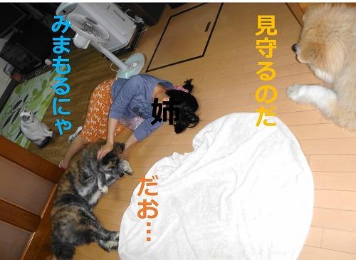 s-200711-3.jpg