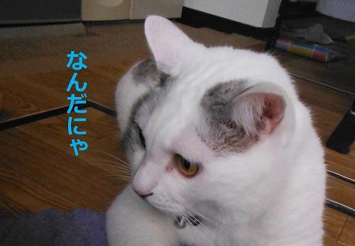s-200921-10.jpg