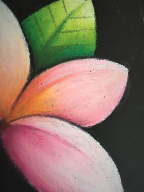 bunga2.jpg