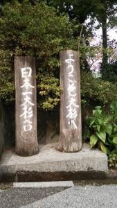ようこそ大杉へ 日本一大杉台 看板