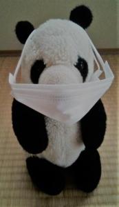 マスクがでかいパンダ