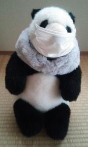 マスクをしたパンダ
