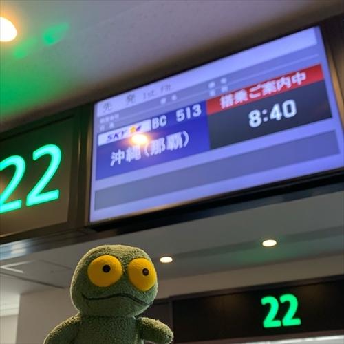 ゆうブログケロブログ沖縄2020 (1)
