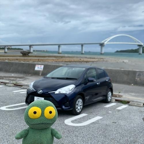 ゆうブログケロブログ沖縄2020 (17)