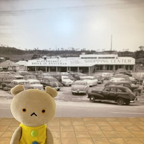 ゆうブログケロブログ沖縄2020 (46)