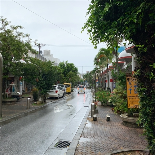 ゆうブログケロブログ沖縄2020 (49)