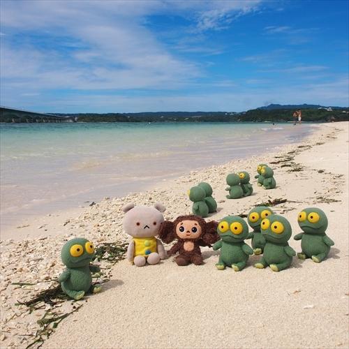 ゆうブログケロブログ沖縄2020 (65)