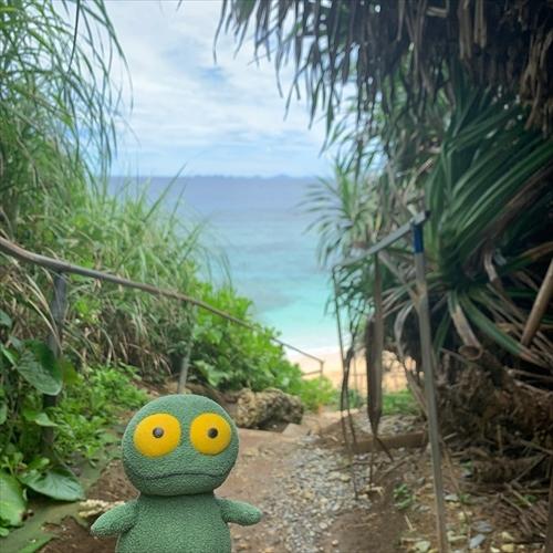ゆうブログケロブログ沖縄2020 (70)