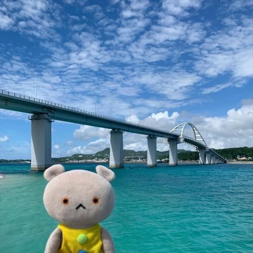 ゆうブログケロブログ沖縄2020 (105)