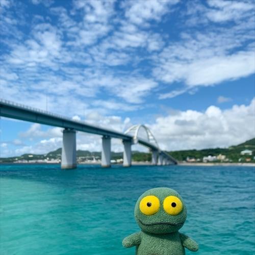 ゆうブログケロブログ沖縄2020 (106)