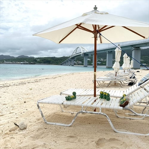 ゆうブログケロブログ沖縄2020 (119)