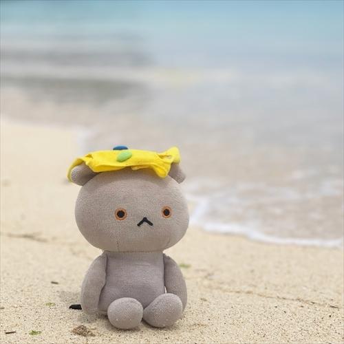 ゆうブログケロブログ沖縄2020 (122)