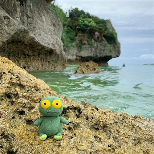 ゆうブログケロブログ沖縄2020 (123)
