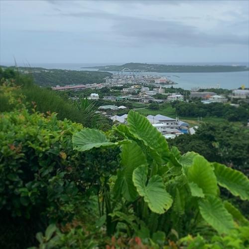 ゆうブログケロブログ沖縄2020 (129)