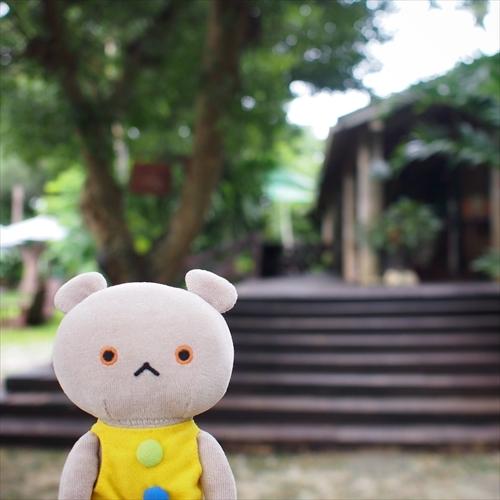ゆうブログケロブログ沖縄2020 (136)